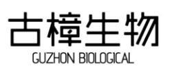古樟生物 GUZHON BIOLOGICAL