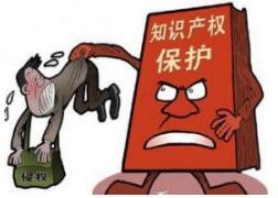 """徐州构建""""三个平台""""保护知识产权"""