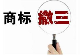 """湛江""""美尼""""商标撤三答辩喜获成功,商标遇撤三该怎么办?"""