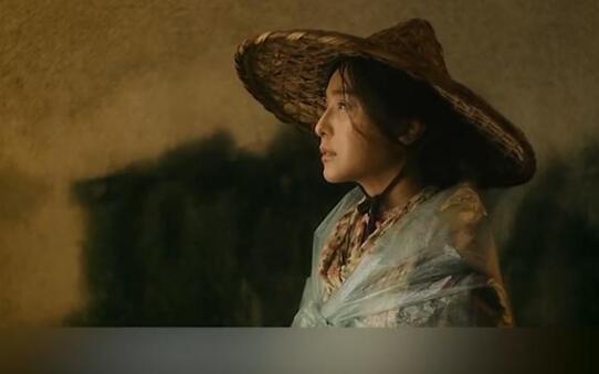 《我不是潘金莲》等片引版权纠纷