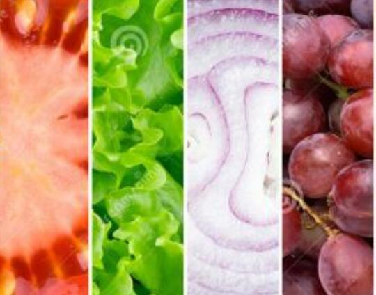 食品商标注册在第几类?如何查?