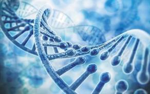 一起涉基因檢測發明專利侵權案成功調解
