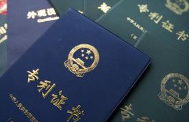 省知识产权局审理武汉专利业务案件133件