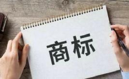 中國商標注冊查詢如何查詢?中國注冊商標申請所需資料有哪些?