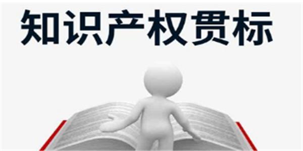 贯标奖励80000元,浙江省德清县知识产权奖励政策!