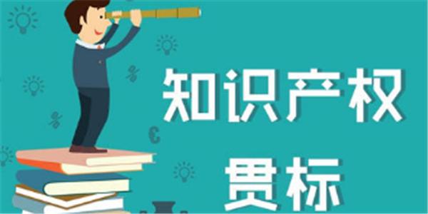 贯标奖励30000元,安徽省颍东区知识产权奖励政策!