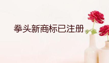 拳头新商标已注册 或为格斗游戏项目L Project