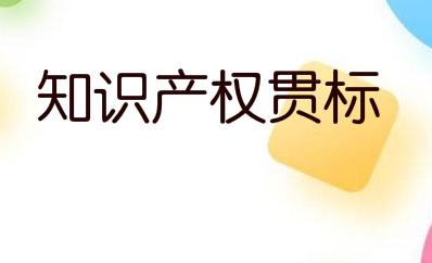 重慶市及各區縣企業知識產權貫標認定獎勵政策