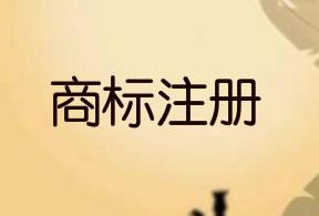 河北邯郸2020年新增境外注册商标19件