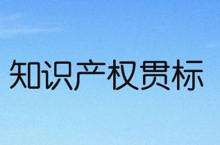 阜陽市潁東區知識產權優勢/示范企業、知識產權貫標資助政策