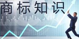 """三星、LG在美注冊"""" QNED""""商標均未成功"""