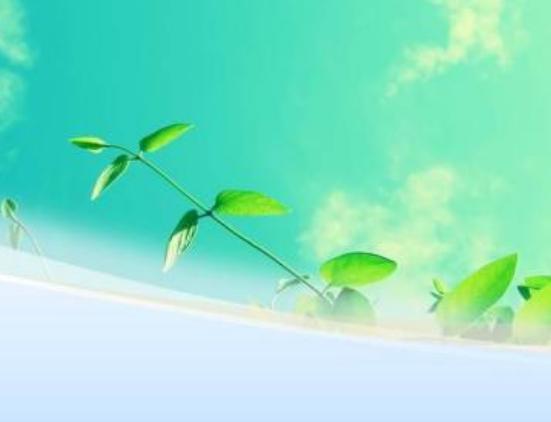 2021年7月28日深圳发布知识产权行政禁令