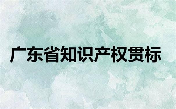 广东省知识产权贯标