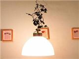 第11类商标:长方LED照明商标如何引领品牌精神