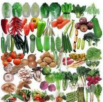 商标特惠推荐:蔬菜种子应注册到...